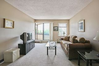 """Photo 5: 203 5224 204 Street in Langley: Langley City Condo for sale in """"SOUTH WYNDE COURT"""" : MLS®# R2600463"""