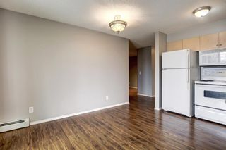 Photo 8: 144 1717 60 Street SE in Calgary: Red Carpet Apartment for sale : MLS®# A1131300