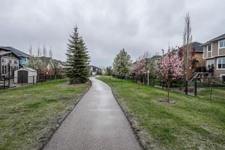 Photo 44: 57 CRANARCH Place SE in Calgary: Cranston Detached for sale : MLS®# A1112284