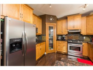 Photo 17: 241 Springmere Way: Chestermere House for sale : MLS®# C4005617