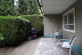 """Photo 12: 116 15150 108 Avenue in Surrey: Guildford Condo for sale in """"Riverpointe"""" (North Surrey)  : MLS®# R2613735"""