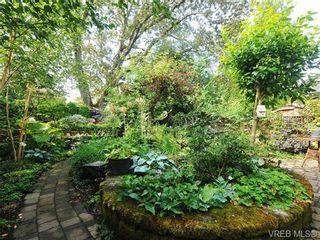Photo 18: 1743 Emerson St in VICTORIA: Vi Jubilee House for sale (Victoria)  : MLS®# 680172