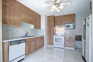 Photo 10: 2618 46 Street SE in Calgary: Forest Lawn Detached for sale : MLS®# A1146875