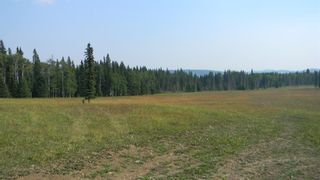 Photo 12: Corner of 178 Ave & 336 St W: Rural Foothills County Land for sale : MLS®# A1053038