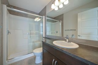 Photo 35: 162 REDSTONE Drive in Calgary: Redstone Semi Detached for sale : MLS®# A1102876