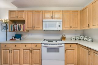"""Photo 6: 206 1187 PIPELINE Road in Coquitlam: New Horizons Condo for sale in """"PINE COURT"""" : MLS®# R2616614"""