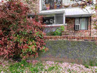 """Photo 3: 105 8770 LAUREL Street in Vancouver: Marpole Condo for sale in """"VILLA MARINE"""" (Vancouver West)  : MLS®# R2458969"""