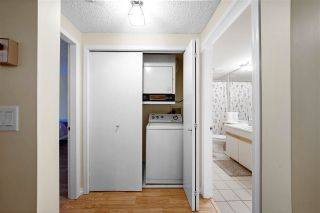 "Photo 19: 310 2925 GLEN Drive in Coquitlam: North Coquitlam Condo for sale in ""Glenborough"" : MLS®# R2615967"