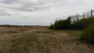 Photo 18: Viewmar Drive: Rural Ponoka County Land for sale : MLS®# C4288523