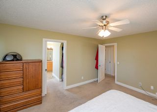 Photo 21: 190 Sagewood Drive SW: Airdrie Detached for sale : MLS®# A1119486