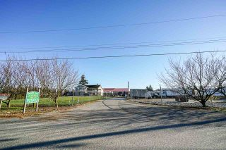 Photo 3: 190 DEFEHR Road in Abbotsford: Aberdeen Agri-Business for sale : MLS®# C8036607