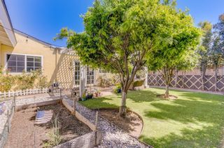 Photo 23: IMPERIAL BEACH House for sale : 4 bedrooms : 1104 Thalia St in San Diego