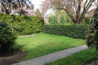 Photo 7: 6031 DUNBAR STREET in Vancouver: Southlands House for sale (Vancouver West)  : MLS®# R2260173
