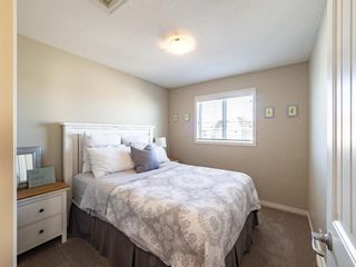 Photo 26: 115 Marquis Court SE in Calgary: Mahogany Detached for sale : MLS®# A1071634