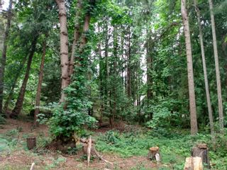 Photo 12: 99 Pirates Lane in : Isl Protection Island Land for sale (Islands)  : MLS®# 882311