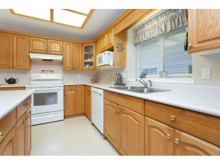 """Photo 11: 22071 OLD YALE Road in Langley: Murrayville House for sale in """"UPPER MURRAYVILLE"""" : MLS®# R2028822"""