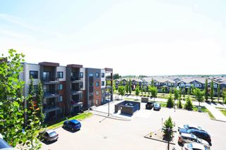 Photo 37: 404 1004 ROSENTHAL Boulevard in Edmonton: Zone 58 Condo for sale : MLS®# E4250933