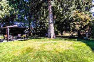 Photo 36: 32107 SHERWOOD Crescent in Abbotsford: Abbotsford West House for sale : MLS®# R2503532
