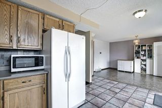 Photo 9: 23 Applecrest Court SE in Calgary: Applewood Park Detached for sale : MLS®# A1079523