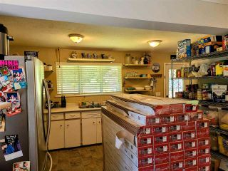 Photo 21: 11387 284 Street in Maple Ridge: Whonnock House for sale : MLS®# R2585451