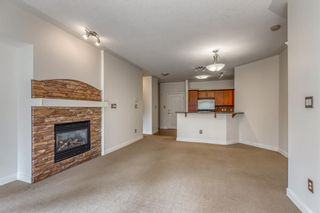 Photo 7: 323 20 Discovery Ridge Close SW in Calgary: Discovery Ridge Apartment for sale : MLS®# A1128263