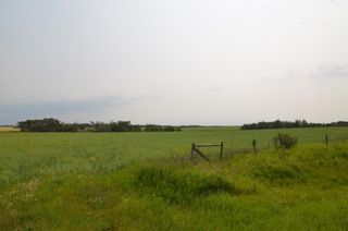 Photo 6: Highway 29 & Range Rd 181: Rural Lamont County Rural Land/Vacant Lot for sale : MLS®# E4258171
