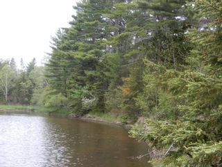 Photo 11: 2236 Highway 376 in Lyons Brook: 108-Rural Pictou County Residential for sale (Northern Region)  : MLS®# 202113317