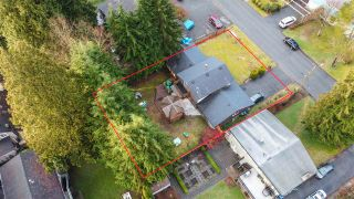 Photo 3: 3346 FINLEY Street in Port Coquitlam: Lincoln Park PQ House for sale : MLS®# R2565979