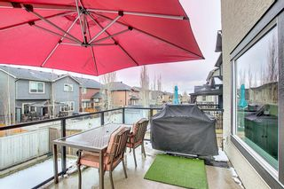 Photo 42: 164 Aspenmere Close: Chestermere Detached for sale : MLS®# A1130488