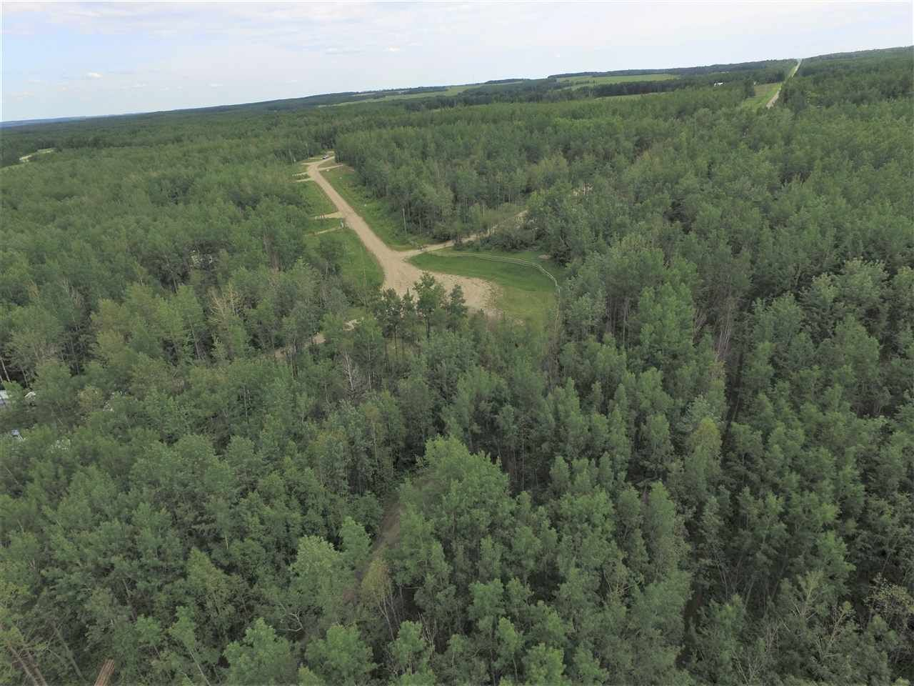 Photo 6: Photos: #11 13070 Twp Rd 464: Rural Wetaskiwin County Rural Land/Vacant Lot for sale : MLS®# E4195644