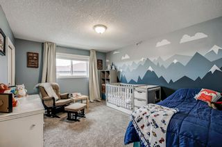Photo 28: 234 Canoe Square SW: Airdrie Detached for sale : MLS®# A1043547