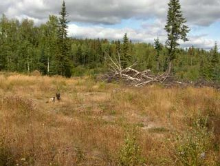 Photo 3: CHIEF LAKE RD in Prince George: Chief Lake Road Land for sale (PG Rural North (Zone 76))  : MLS®# N166508