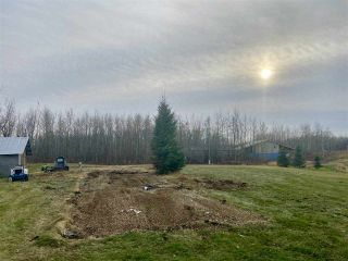 Photo 6: 49101 Range Road 233: Rural Leduc County Rural Land/Vacant Lot for sale : MLS®# E4219459
