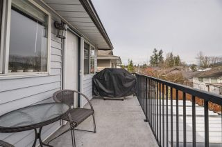 Photo 25: 9476 213 Street in Langley: Walnut Grove House for sale : MLS®# R2551356