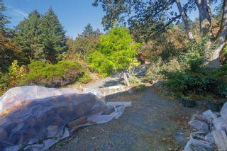 Photo 31: 4553 Blenkinsop Rd in : SE Blenkinsop House for sale (Saanich East)  : MLS®# 886090