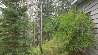 Photo 4: Winchell Lake Road Lot 2, TWP Road 290A: Rural Mountain View County Detached for sale : MLS®# C4200686