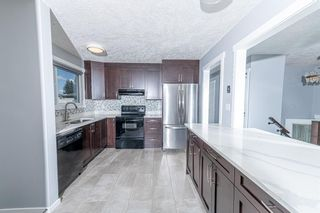 Photo 8: 280 Rundlefield Road NE in Calgary: Rundle Detached for sale : MLS®# A1142021