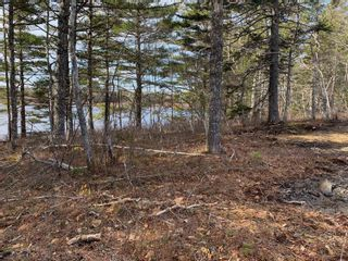 Photo 15: Lot E Hebb Road in Wileville: 405-Lunenburg County Vacant Land for sale (South Shore)  : MLS®# 202106726