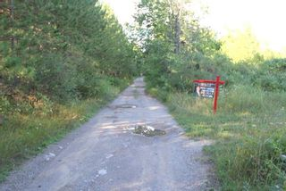 Photo 18: Lt 27 Ramblewood Trail in Kawartha Lakes: Rural Bexley Property for sale : MLS®# X4857401