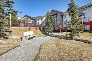 Photo 45: 213 26 VAL GARDENA View SW in Calgary: Springbank Hill Apartment for sale : MLS®# A1095989