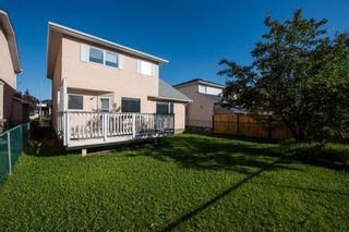 Photo 45: 186 Coral Springs Boulevard NE in Calgary: Coral Springs Detached for sale : MLS®# A1146889