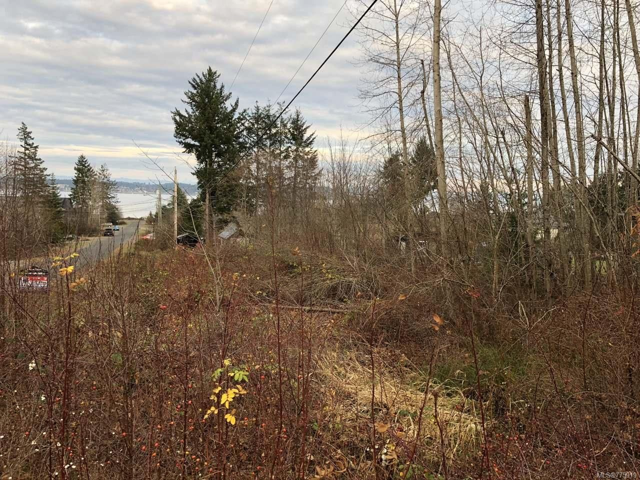 Main Photo: LT 1 ISLAND HIGHWAY in ROYSTON: CV Courtenay South Land for sale (Comox Valley)  : MLS®# 775919