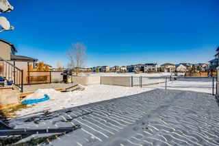 Photo 22: 2081 Luxstone Boulevard SW: Airdrie Detached for sale : MLS®# A1073784