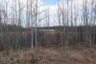Photo 14: Twp 510 RR 33: Rural Leduc County Rural Land/Vacant Lot for sale : MLS®# E4239253