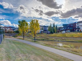 Photo 50: 203 SAGEWOOD Boulevard SW: Airdrie Detached for sale : MLS®# A1037053