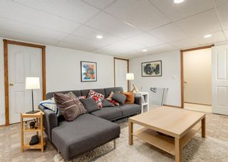 Photo 19: 136 MT ABERDEEN Manor SE in Calgary: McKenzie Lake Row/Townhouse for sale : MLS®# A1109069