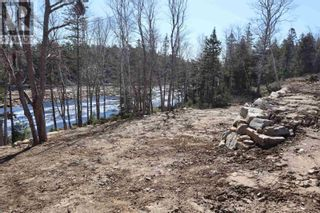 Photo 6: Lot Highway 3 in Summerville Centre: Vacant Land for sale : MLS®# 202109429