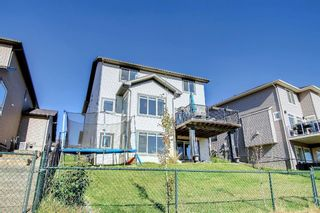 Photo 50: 176 WILLOWMERE Way: Chestermere Detached for sale : MLS®# A1153271