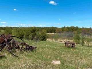 Photo 42: 24402 Township Road 603A: Rural Westlock County House for sale : MLS®# E4247251