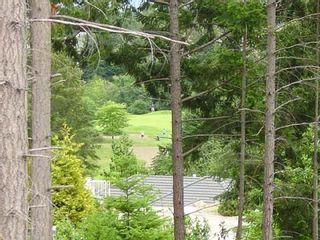 Photo 6: LT 36 BONNINGTON DRIVE in NANOOSE BAY: Fairwinds Community Land Only for sale (Nanoose Bay)  : MLS®# 270546